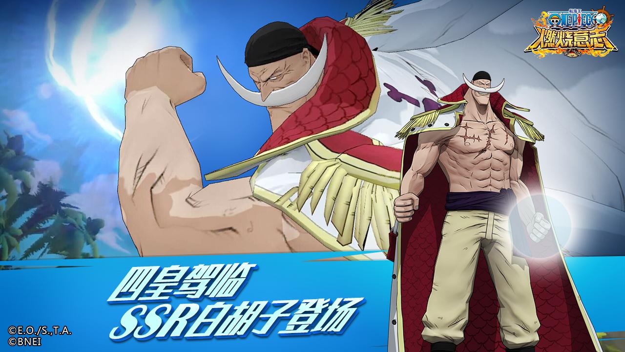 Screenshot 4: 航海王:燃燒意志