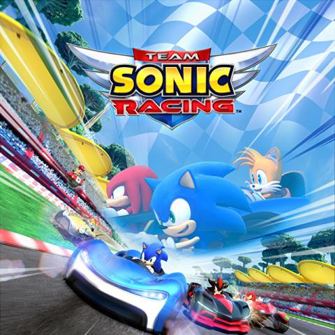Icon: 音速小子搭檔組隊大賽車