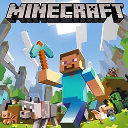 Icon: Minecraft